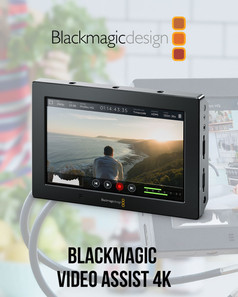 video-assist.jpg
