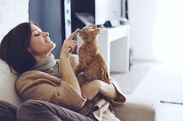 Young woman wearing warm sweater is resting with a cat on the armchair at home one autumn