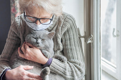 Elderly woman in protective mask holding a cat looks out the window wearing. Christmas qua