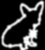 Constellation-Dog-15.png