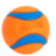 Chuckit! Ultra Ball.jpeg