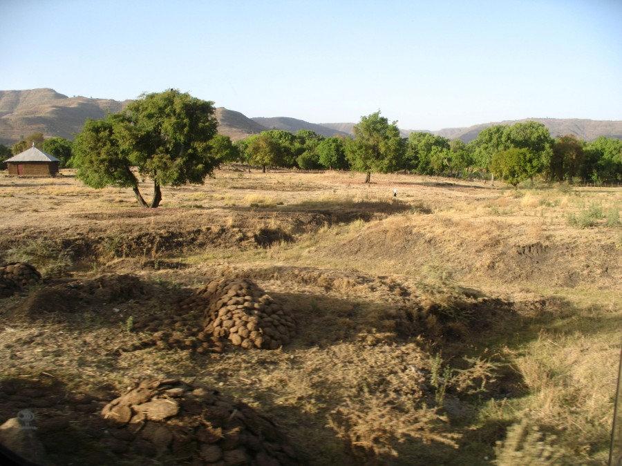 зеленая энергетика в эфиопии