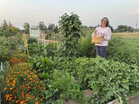 Rose RootZone Sept 2021 Iss. 2: Gardener Updates