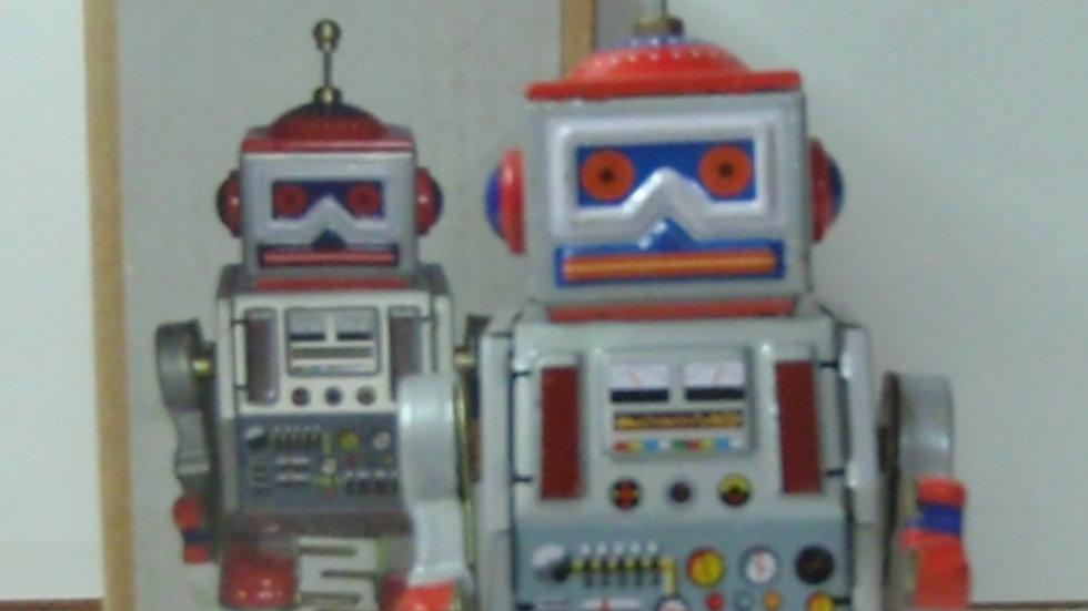 MS 406 Robot
