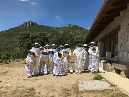 Visita al Aula apícola Sierra de Hoyo