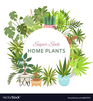 home-plants-in-circle-wreath-sale-poster