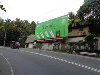 Sapumal Hoarding @ Kadugannawa