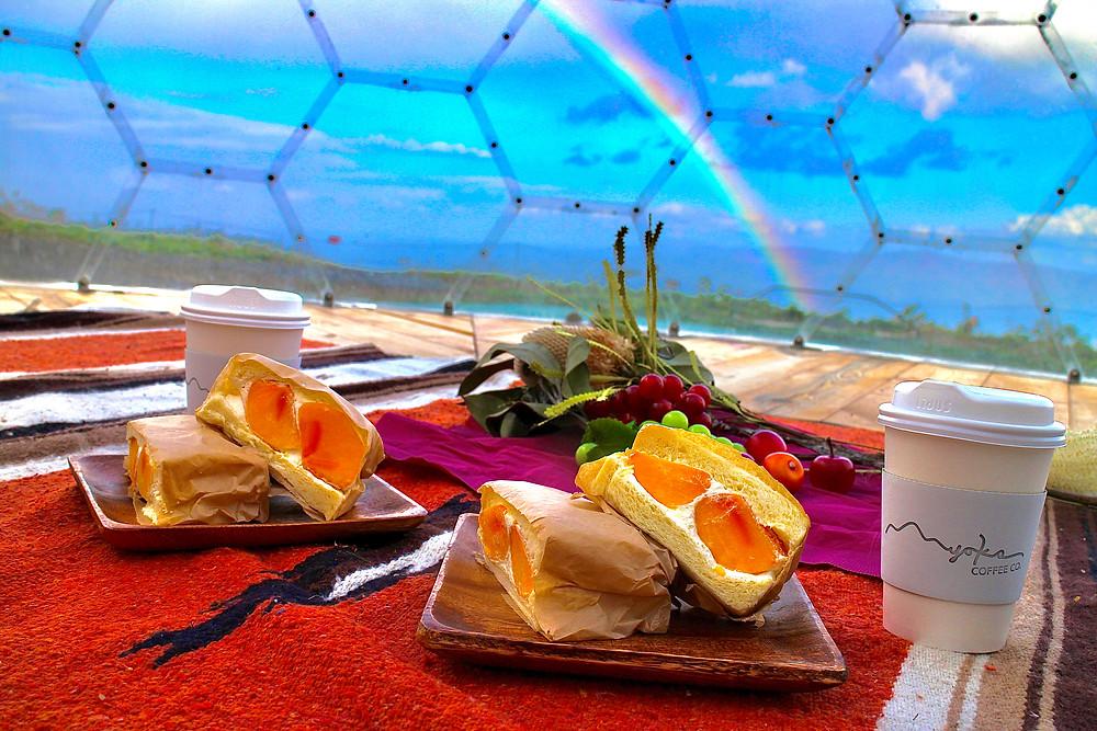 ピクニックと虹