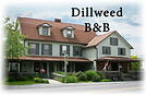 dillweed photo logo.jpg