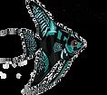 kopco aquatics top logo.png