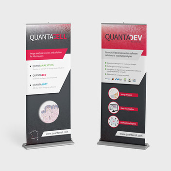 Roll-up Quanta Cell