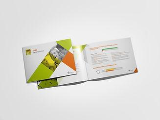 Brochure RLH 30