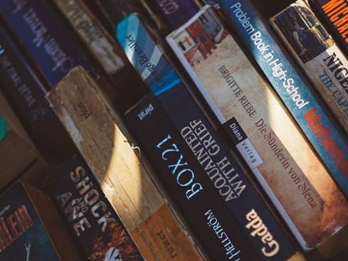 Teoria Literária: Elementos da Narrativa