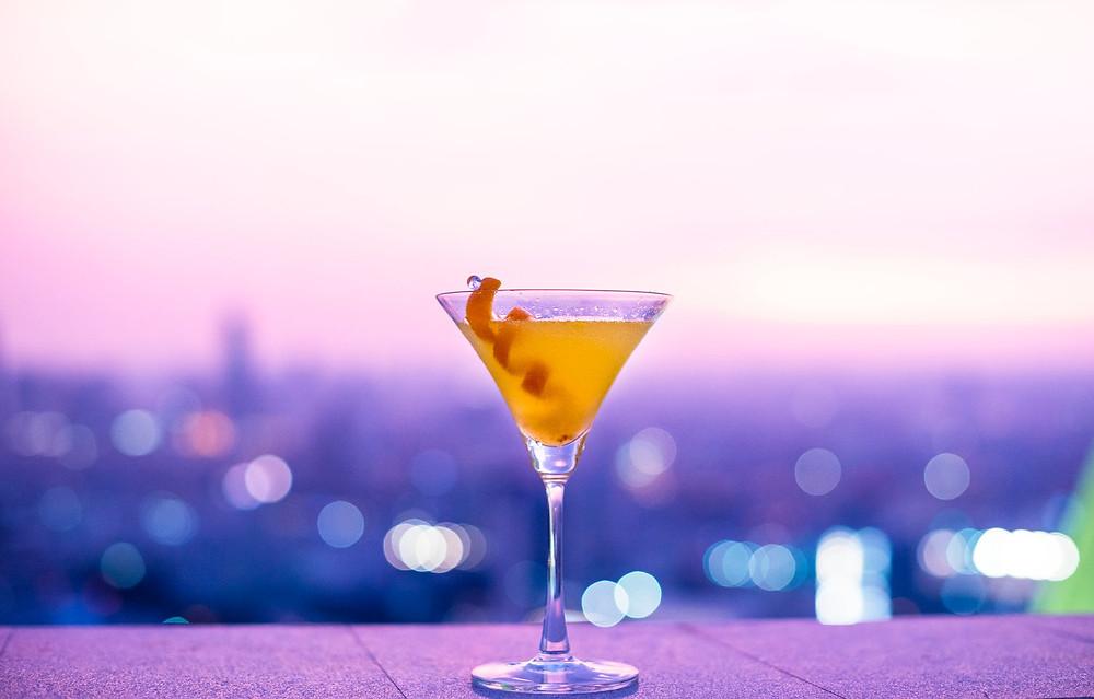 Livro Martini Seco