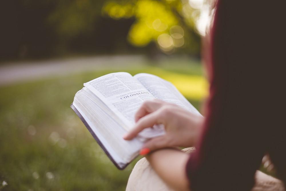 Livro A Vida Nova de Orhan Pamuk