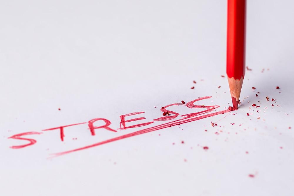 Livro Muito Trabalho, Pouco Stress