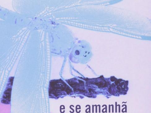 Livros: E Se Amanhã o Medo - O lado contista de Ondjaki
