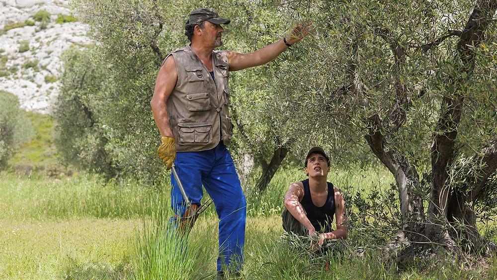Filme Meu Verão na Provença