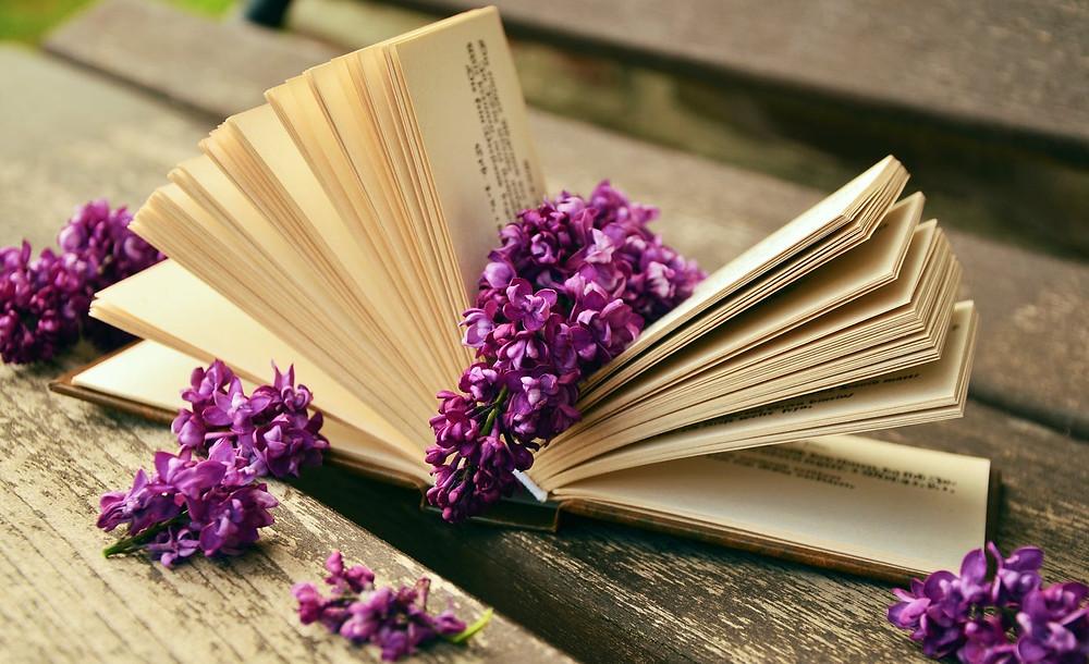 Livro Como Se Encontrar Na Escrita