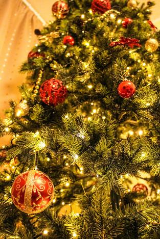 Celebrações: Natal Todo Dia – Os desejos do Bonas Histórias!