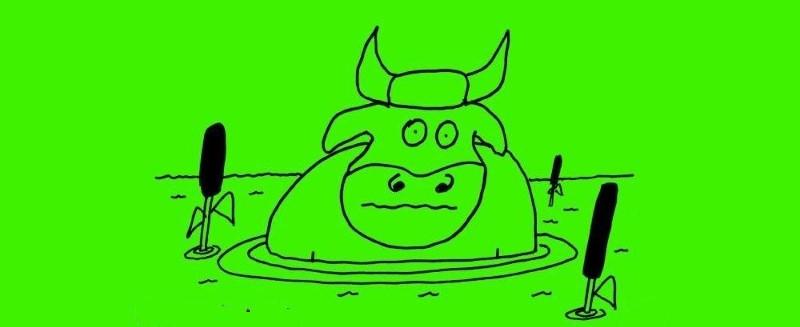 Livro A Vaca foi pro Brejo