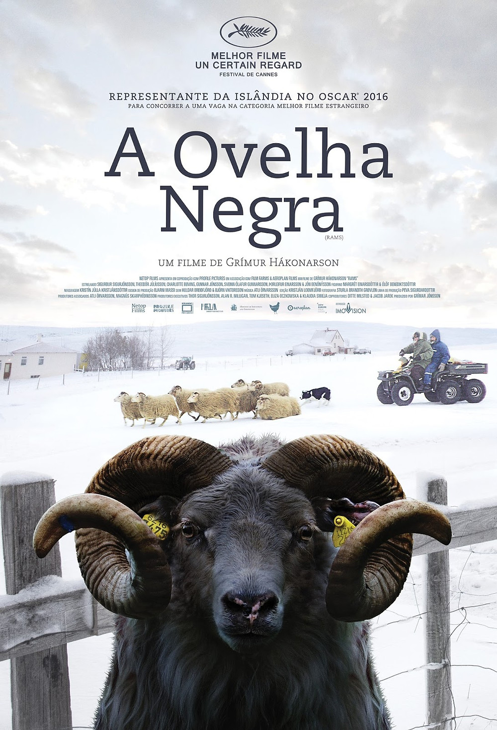 Ovelha Negra (Hrútar: 2015)