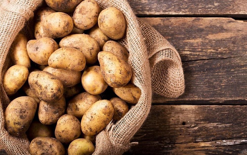 Livro A Peste das Batatas