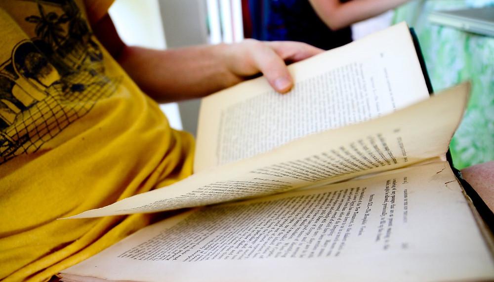 Análise Literária por Ricardo Bonacorci