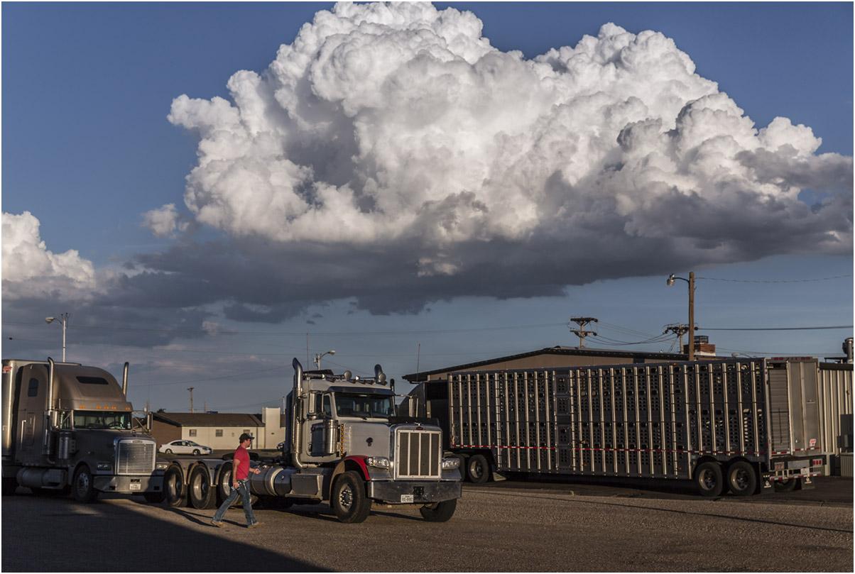 Cloud, Dumas, 2013