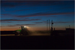 Sowing, Hart, 2013