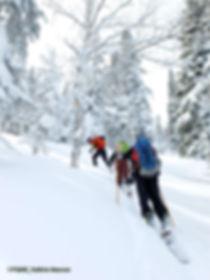 Ski_FQME.jpg