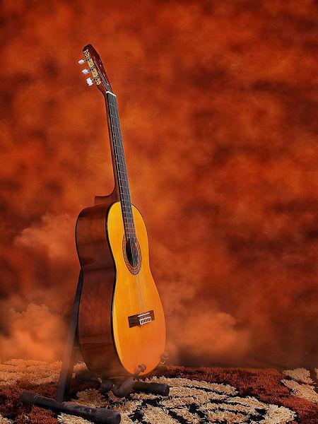 guitar TG2020.jpg