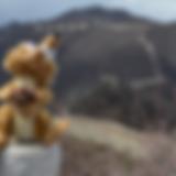 Schermafbeelding 2018-08-19 om 13.03.28.