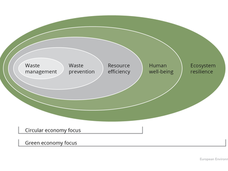 Circular Economy - More than just a Buzz Phrase