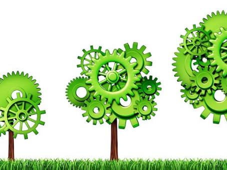 Green economy and India