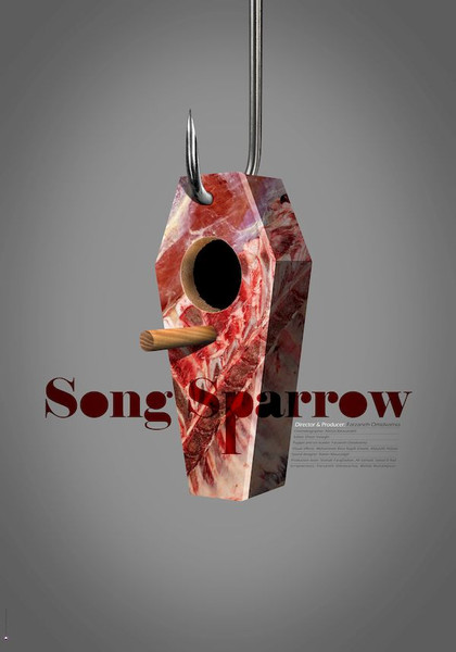 song sparrow web.jpg
