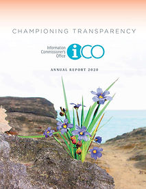 2020 ICO Annual Report - Cover.jpg