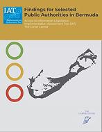 Carter Center IAT Report - Cover.jpg
