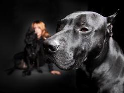 Animal-Photographer-Irina-Logra-003.jpg