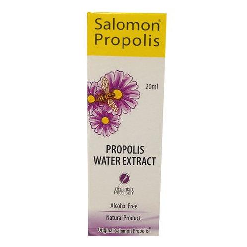 Própolis spray extrato aquoso - 20ml