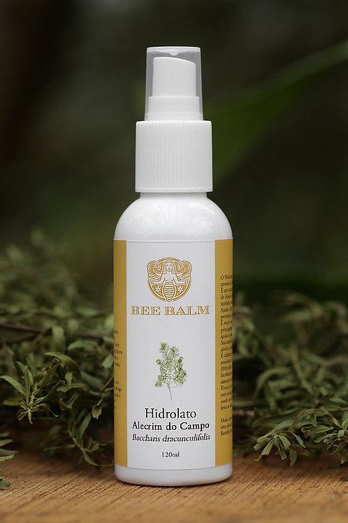 Hidrolato alecrim do campo - Bee Balm