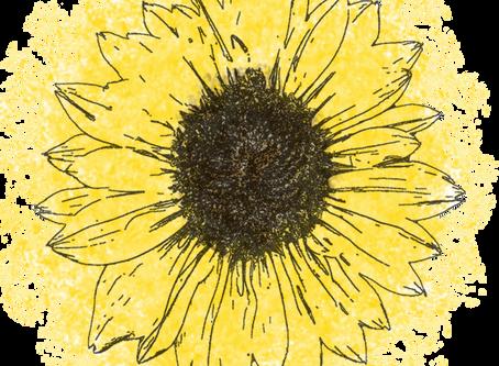 Sow Some Sunshine