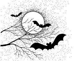 Bats Amoré