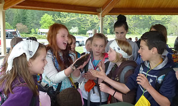 Bonner County Elementary students touching live fish from Idaho Fish and Game at the Pend Oreille Water Festival