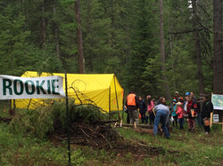 Rookie1_scaling_2018