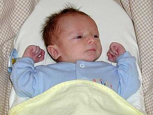 sam2004-6.jpg