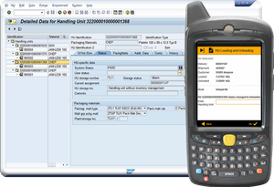 The full SAP input form and the Mobile version.