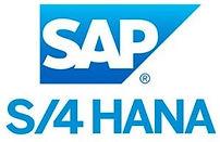 SAP_S_4-300x300.jpg