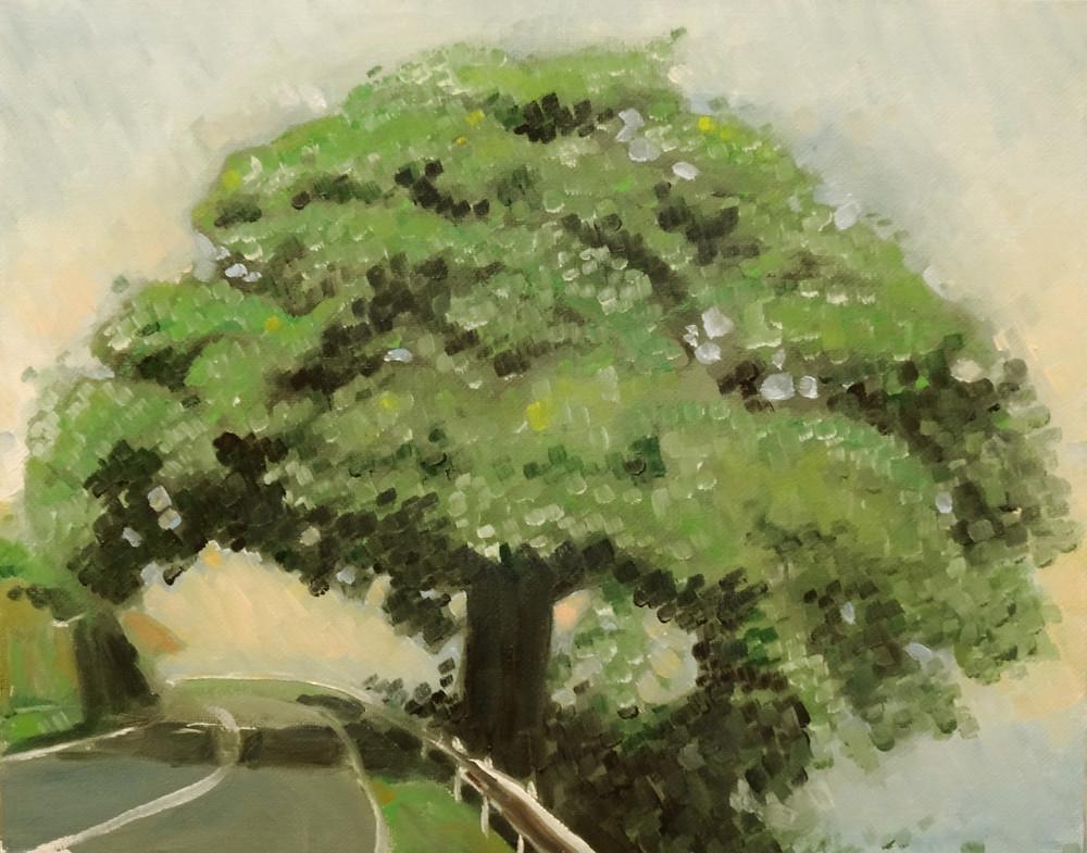 26/08/2014 : Arbre de la montagne Pelée - Huile sur toile 30 x 24 cm