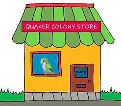 store01.png